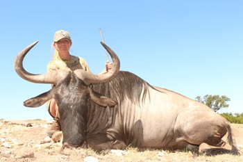 White Bearded Wildebeest Hunt