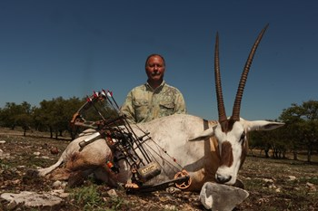 Arabian Oryx Hunt