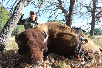 Record Buffalo Bow Hunt