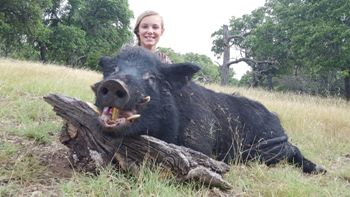 Texas Wild Boar Hunt