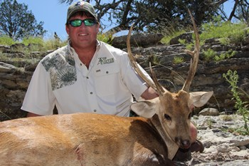 Hog Deer Hunt