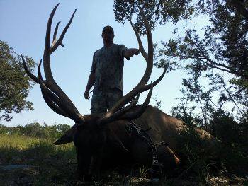 Monster Elk Hunt