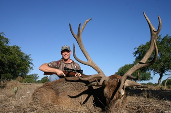 Red Stag Rifle Hunt