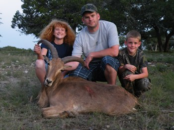 Texas Aoudad Hunts