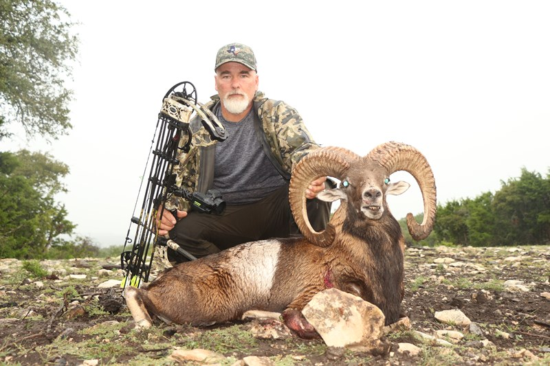 Stumberg Ram Hunt