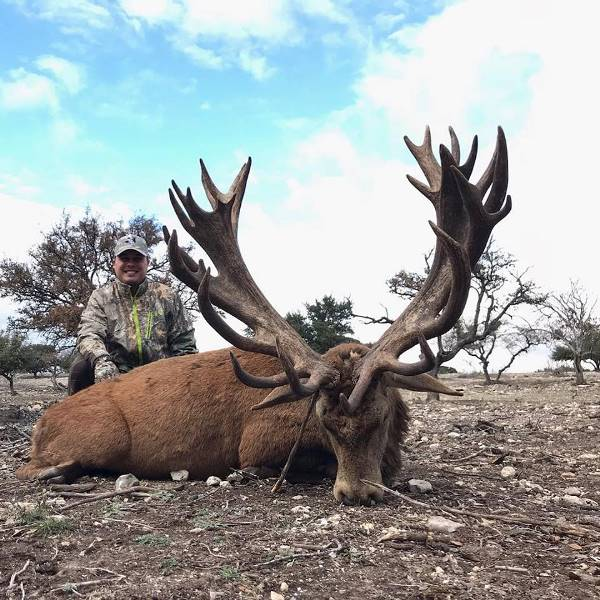 "500"" Red Stag Hunt"