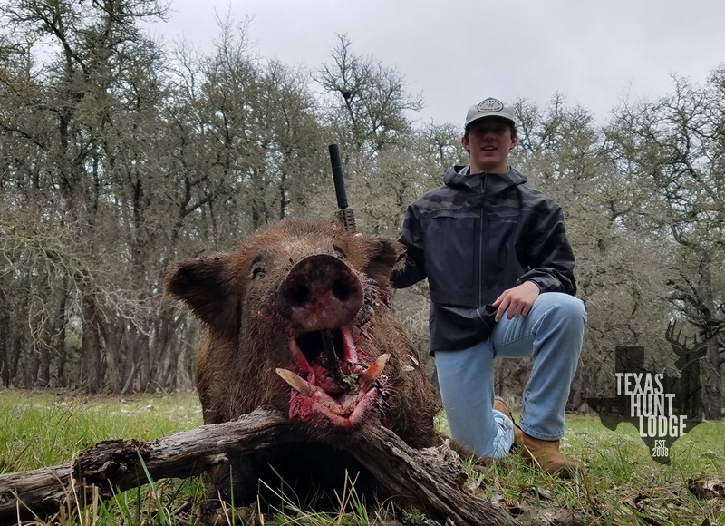 Trophy Hog Hunt