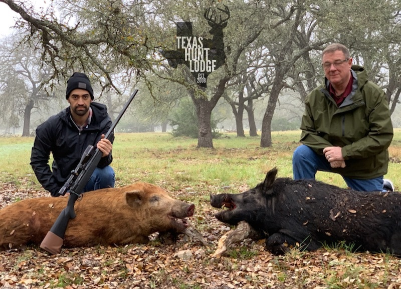 Trophy Wild Boar Hunt