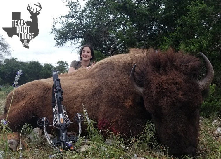 Trophy Buffalo Hunting