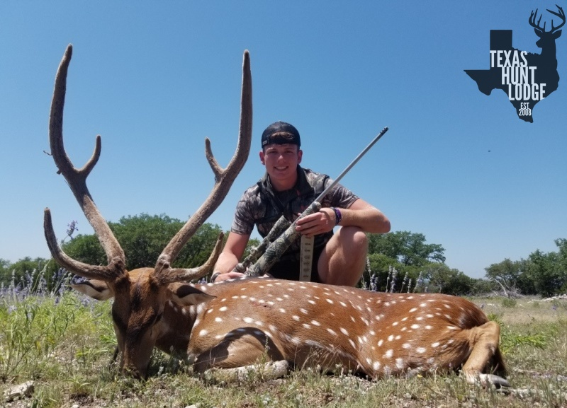 Axis Hunts in Texas