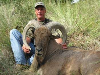 Barbary Sheep Hunt