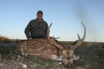 Axis Buck Hunt
