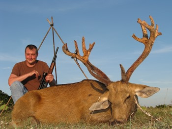 Barasingha Deer Hunt