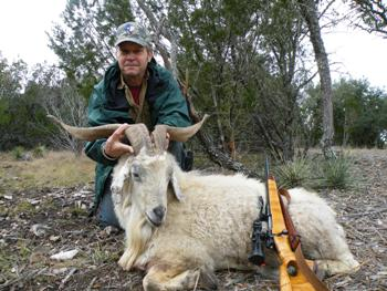 Catalina Goat Hunt