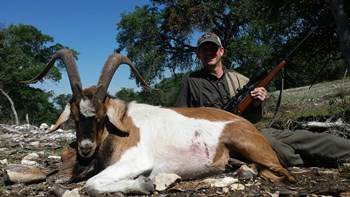 Hybrid Ibex Rifle Hunt