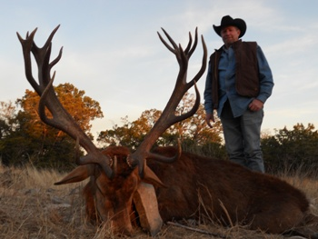 360 SCI Red Stag Hunt