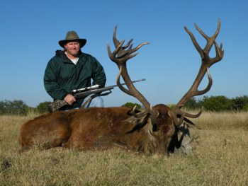 Gold Medal Red Stag Hunt