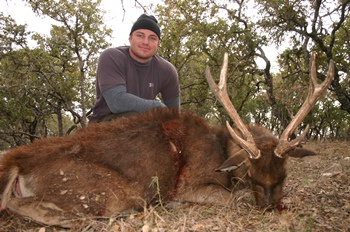 Rusa Deer Hunt