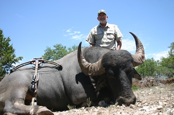 World Record Water Buffalo Hunts